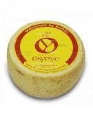 Fromage de Chèvre & Brevis endurci Flor de Payoyo
