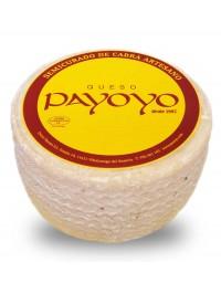Payoyo Semi-cured goat cheese