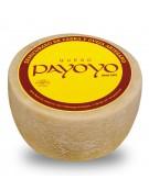 Payoyo Semi-cured goat´s cheese