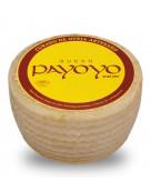 Payoyo's Sheep's cured cheese