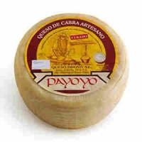 Payoyo goat Cheese