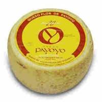 Payoyo goat and sheep cheese